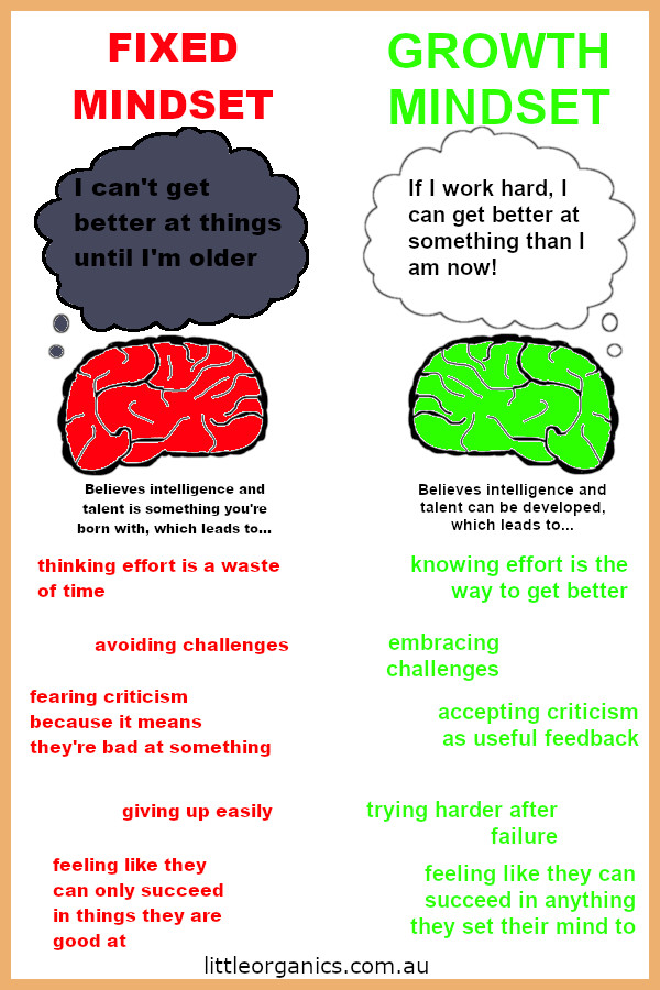 Growth Vs Fixed Mindset Infograph by Little Organics