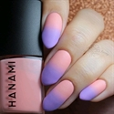 Hanami Nail Polish - Matt Top Coat