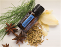 doTERRA Essential Oil Blends - DigestZen Digestive Blend