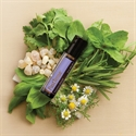 doTERRA Essential Oil Blends - PastTense Roll On Relaxation Blend