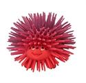 Lanco 100% Natural Rubber Teether Hunter Hedgehog