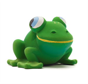 Picture of Lanco 100% Natural Rubber Teether Frankie Frog Sensory Toy